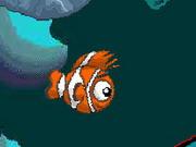 Swim Mr Fish